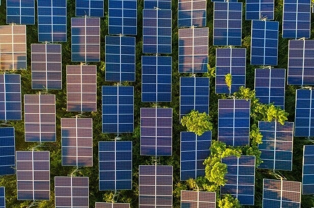 birdseye view of solar panels in the sun with trees