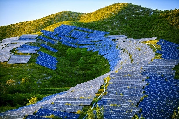 solar panels on a tree-covered hill