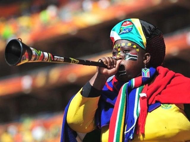 South Africa fan 2010