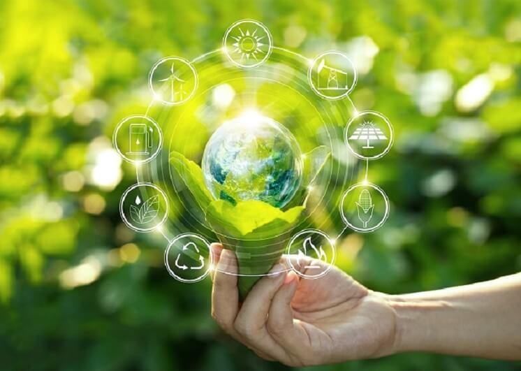 UK renewable energy suppliers