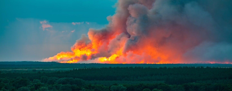a wildfire near River Don, Russia