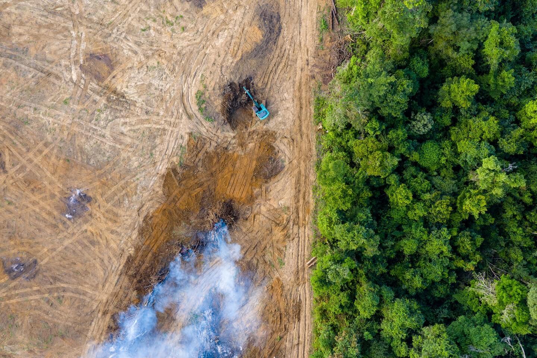 aerial view of desforestation