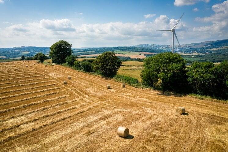 farm in Wales