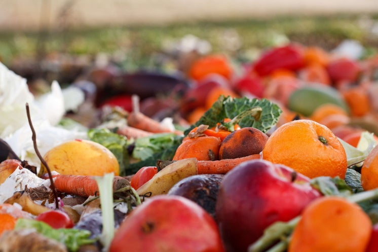 food waste in a landfill