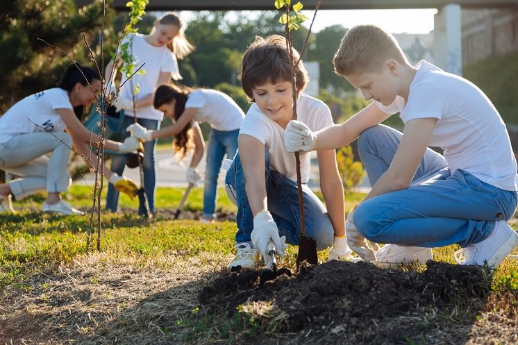 A group of children planting a tree