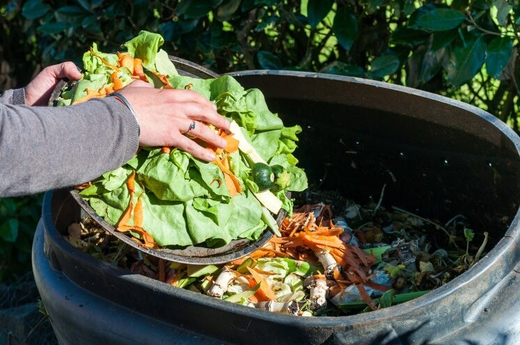 a person shifting food into a compost bin